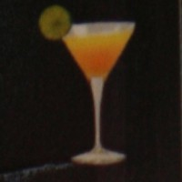 Burbon Sloe Gin